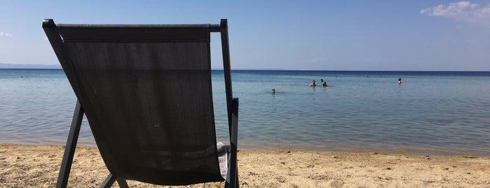 Saint George Beach Bar is one of 🌞🌊Chalkidiki-->to The Beach 🐋🐬🐟🐠🐡🦀.