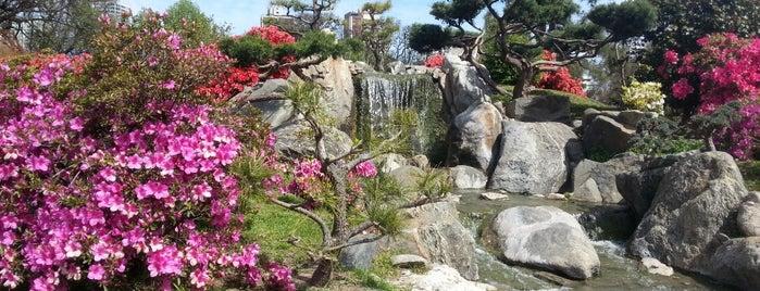 Jardín Japonés is one of Lugares que visité.