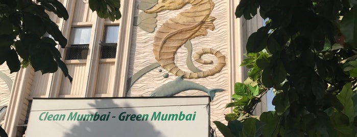 Taraporewala Aquarium is one of Mumbai Maximum.
