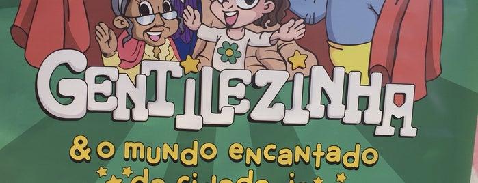 G.R.E.S. Unidos do Jacarezinho is one of Escolas de Samba do Rio de Janeiro.