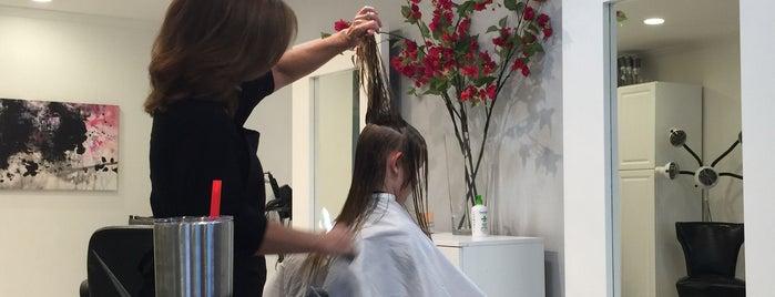 Salon Vachon is one of routine.