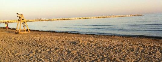 Playa de Levante / Los Curros is one of Playas.
