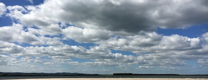 Budle Bay is one of Northumberland nature reserves.