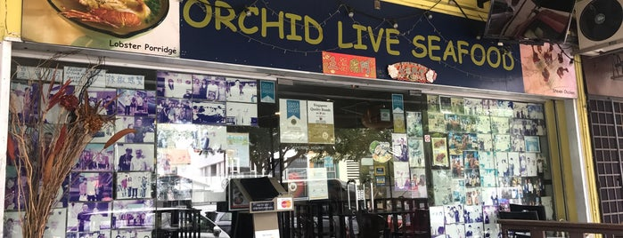 Orchid Live Seafood is one of Awesome Food Places All Over.