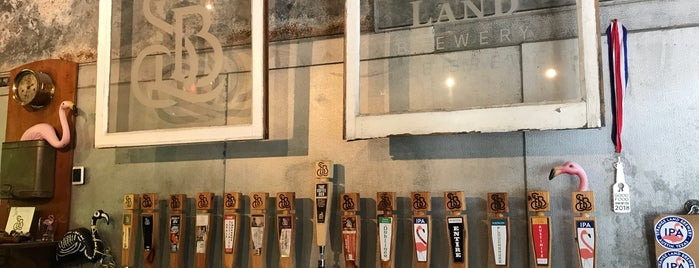 Strange Land Brewery is one of Texas breweries.