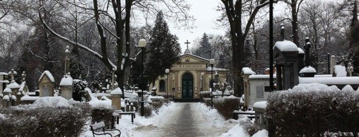 Cmentarz Rakowicki is one of Kraków.