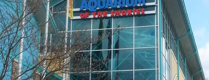Ripley's Aquarium of the Smokies is one of Vacation Things.