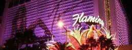 Go Sexy at the Flamingo is one of Las Vegas Flamingo Tom Jones 2013.