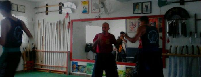 Academia Garra de Aguia de Kung Fu is one of Atendimento nota 10..