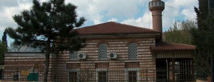 Şah Sultan Camii is one of İstanbul'daki Mimar Sinan Eserleri.