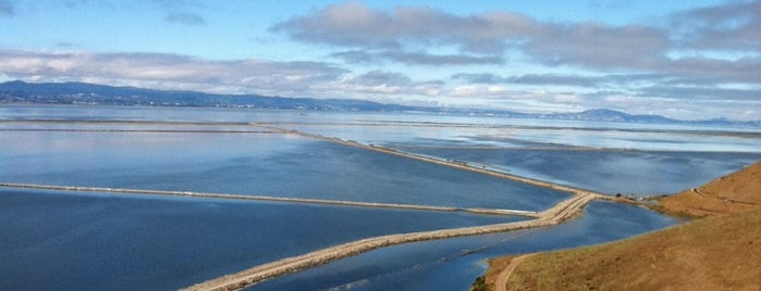 Coyote Hills Regional Park is one of Fremont? Seriously?.