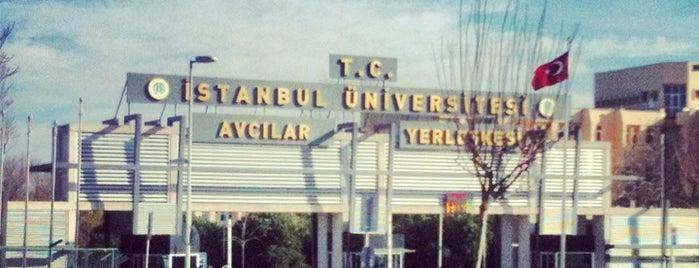 İstanbul Üniversitesi is one of 34.