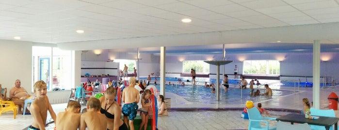 Zwembad Zuiderdiep is one of Favo.