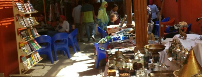 CSA - Community Services Association is one of Cairo's Best Spots & Must Do's!.