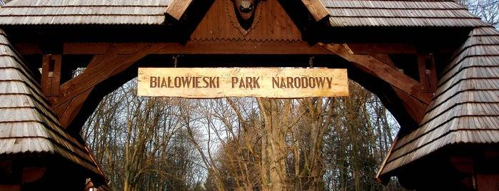 Białowieski Park Narodowy is one of Frontiers of the EU.
