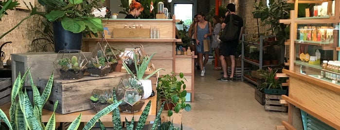 Crown Flora Studio is one of Indie Boutique & Retail.