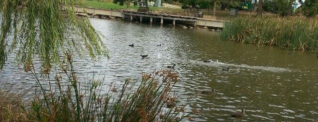Duckpond is one of Parks.