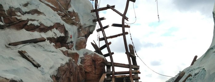 Expedition Everest is one of My Sunshine State <3.