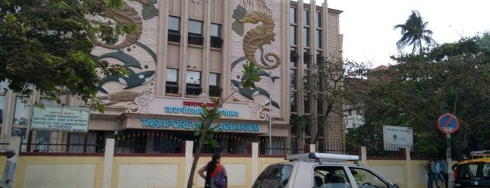 Taraporewala Aquarium is one of Mumbai Maximum.