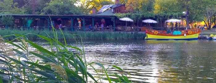 Robin's Nest Eco Resort is one of Oteller.