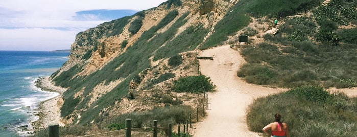 Hiking Trails At South Shores is one of Explore.