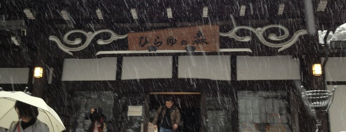 Hirayu no Mori is one of 日帰り温泉.