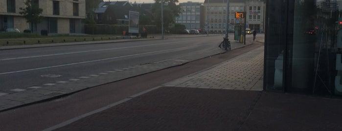 Bushalte Oudenoord is one of Public transport NL.
