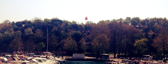 İstinye Sahili is one of İstanbul Avrupa Yakası #2 🍁🍃.