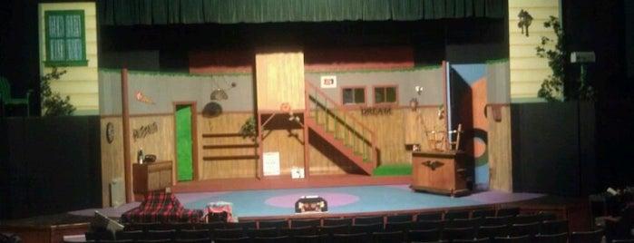 Vista Avo Playhouse is one of Viva La Vista!.