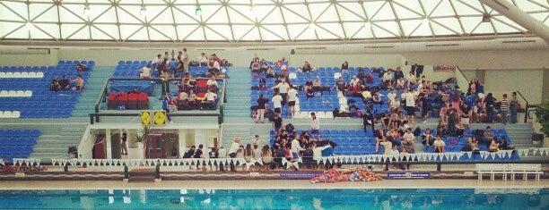 Ege Üniversitesi Olimpik Yüzme Havuzu is one of Veni Vidi Vici İzmir 1.