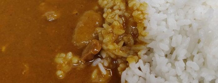 カレーの店 サカエヤ is one of カレーが好き☆*:.。. o(≧▽≦)o .。.:*☆.