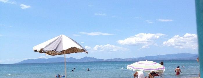 Sarımsaklı Plajı is one of AYVALIK #1 🏊🏄.