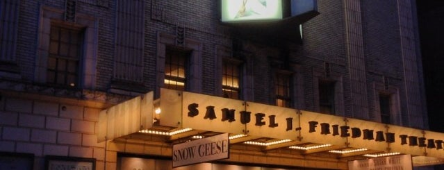 Samuel J. Friedman Theatre is one of Broadway Theatres.