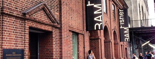 BAM Fisher is one of The 15 Best Performing Arts Venues in Brooklyn.