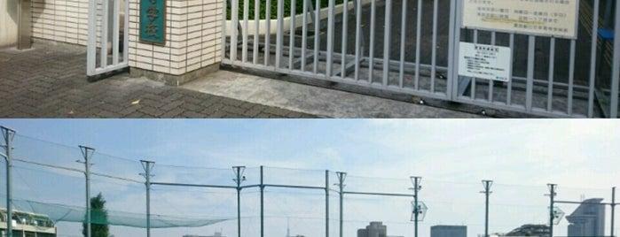 東京都立 竹早高等学校 is one of 都立学校.