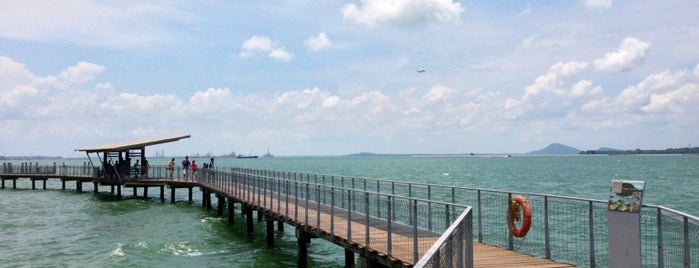 Chek Jawa Coastal Boardwalk is one of Trek Across Singapore.