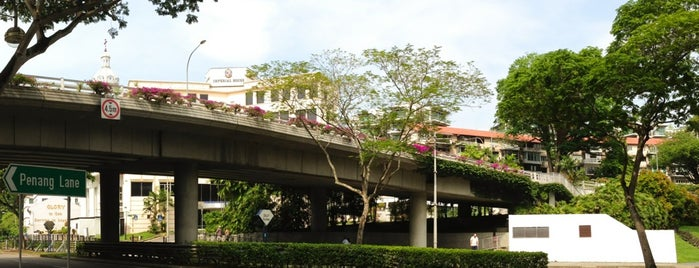 Oxley Flyover is one of Non Standard Roads in Singapore.