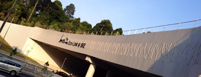Eco-Link @ BKE is one of Trek Across Singapore.
