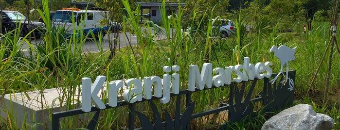 Kranji Marshes is one of Trek Across Singapore.