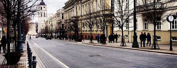 Gediminas Avenue is one of Streets.