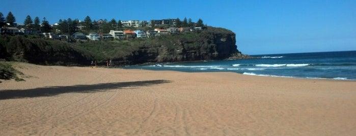 Bilgola Beach is one of Best of Sydney.