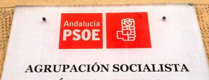 Agrupación PSOE Málaga Centro is one of Agrupaciones / Casas del Pueblo del PSOE Málaga.
