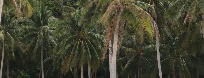 Seven Commandos Beach is one of Filipinler-Manila ve Palawan Gezilecek Yerler.