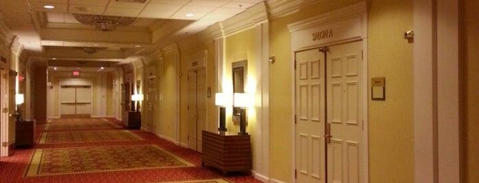 Bethesda Marriott is one of Hotels.