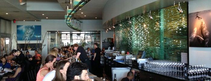 Slanted Door is one of SF comida.