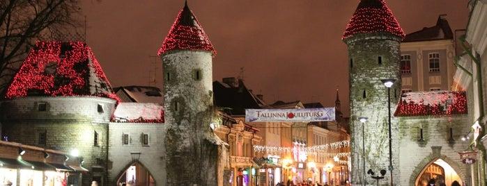 Вируские ворота is one of Любимые места в Таллинне.