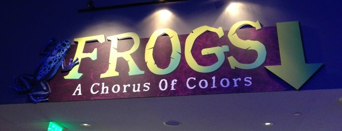 Frogs - A Chorus Of Colors is one of Places I have gone.