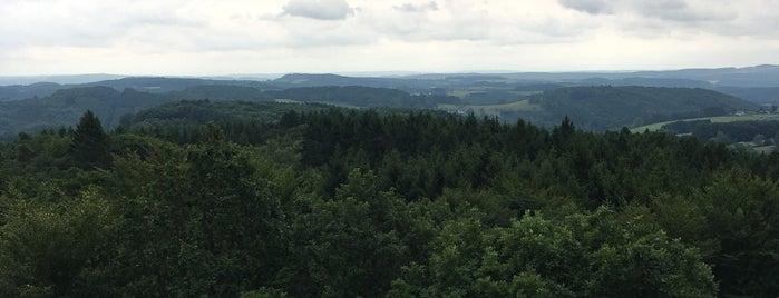 Naturerlebnispark Panarbora is one of Köln.
