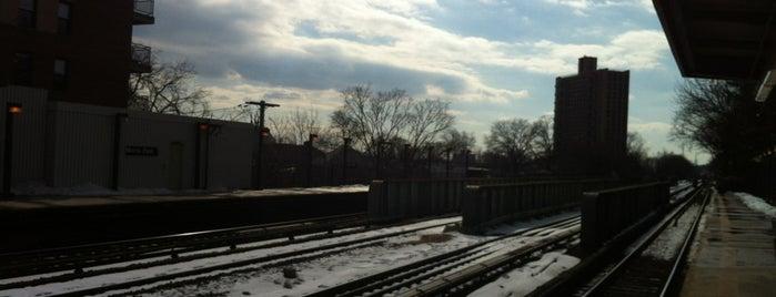 MTA Subway - Morris Park (5) is one of NYC Subways 4/5/6.
