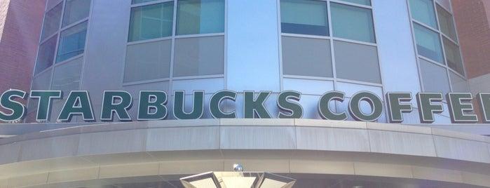 Starbucks is one of Waterloo.